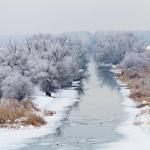 Calatorii in Delta Dunarii