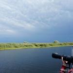 Excursie de o zi in Delta Dunarii