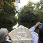 Excursii cu barci rapide in Delta Dunarii