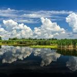 Sejur in Delta Dunarii 3 zile cu cazare la Maliuc