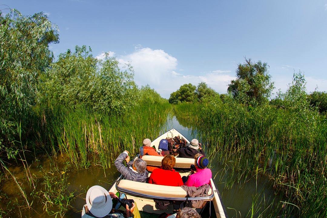 Inchiriere barci rapide in Delta Dunarii